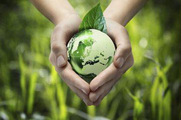 Ekološka poljoprivreda